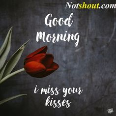 Good Morning Images With Quotes, Good Morning Wishes Good Morning Kisses, Good Morning Love Messages, Good Morning Handsome, Good Morning Quotes For Him, Good Morning My Love, Good Morning Funny, Good Morning Inspirational Quotes, Good Morning Photos, Love Sayings