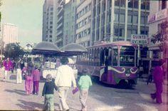 CURITIBA ANOS 1950-1960