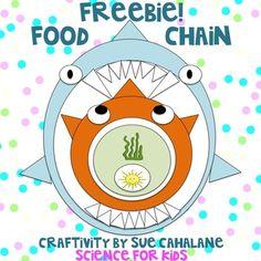 Freebie! Food Chain Craftivity by Sue Cahalane, ScienceForKidsBlog.blogspot.com