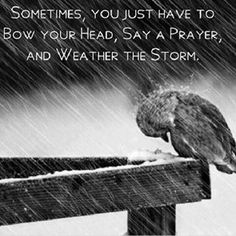Sometimes you just have to bow your head, say a prayer, and weather the storm.