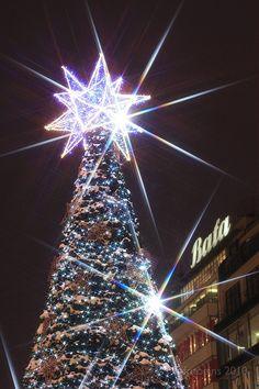 Christmas markets, Prague Wenceslas Square, what lighting. Christmas Tree Light Up, Christmas Light Displays, Christmas Music, Holiday Lights, Christmas Love, All Things Christmas, Beautiful Christmas, Christmas Holidays, Christmas Decorations