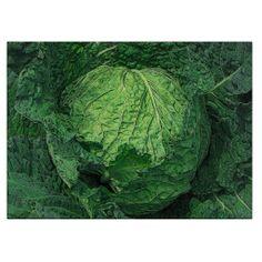 Savoy Cabbage Cutting Board