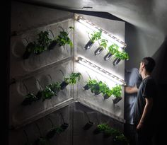 Using all locally sourced and recycled materials, the hydroponic bottle wall fuses furniture design with current innovative technologies associated with urban agriculture. #hydroponics #urbanagriculture