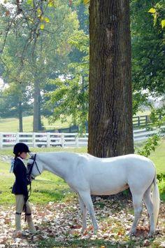 Ky. Horse Park