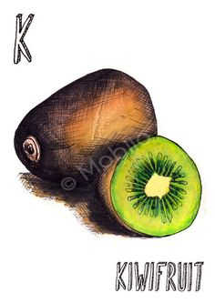 Items similar to Vegetable fruit illustrations- ink and watercolor print-hand rendered type choose your print-kiwi, iceberg lettuce, jicama or lemon on Etsy Fruit Illustration, Food Illustrations, Fruit And Veg, Fruits And Vegetables, Watercolor Fruit, Baby Images, Natural Forms, Fabric Painting, Kiwi