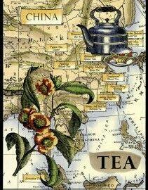 All the tea in china Dutch website