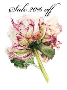 Sale 20% Off Peony  large botanical print botanical