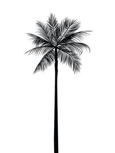 Palm Tree Print Palm Leaves Print Palm Tree Art Palm Tree Wall Art Printable Home Decor Summer Art Summer Print Black and White Palm Palm Tree Art, Palm Tree Leaves, Palm Trees, Leaf Wall Art, Tree Wall Art, Leaf Art, Handpoked Tattoo, Tattoo Diy, Gold Tattoo
