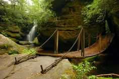 Dismals Canyon, Alabama - Must visit