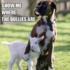 ;) stand up! dénoncer l'intimidation et aller voir un adulte pour vous aider!