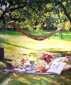 picnics and hammocks