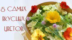5 Cамых Вкусных Цветов