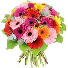 Πολύχρωμο μπουκέτο με 21 πανέμορφες ζέρμπερες Γιορτή Μητέρας ! Χρόνια πολλά σε όλες τις μητέρες του κόσμου!!! Κυριακή 13 ΜαΪου   www.flowers4u.gr Gerber Daisies, David Austin, Send Flowers, Daisy, Bouquet, Rose, Garden, Plants, Stuff To Buy