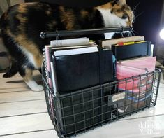 Keeping multiple journals at once - Stationery Nerd Journal Prompts, Journals, Commonplace Book, Nerd, Stationery, Bullet Journal, Memories, Basket, Cat