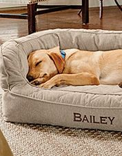 You dog will enjoy superior joint and muscle health resting in our Memory Foam Couch Dog Bed. Large Dogs, Small Dogs, Dog Sofa Bed, Dog Beds, Bed Wrap, Dog Weight, Home Protection, Medium Dogs, Quilt Cover