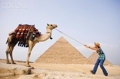 Female Tourist with Camel Stock Photo ID:42-46138918