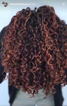 Inconceivable Ladies Hairstyles Trends Ideas Pintura highlights on naturally curly hair.Pintura highlights on naturally curly hair. Dyed Curly Hair, Brown Curly Hair, Colored Curly Hair, Curly Hair Tips, Short Curly Hair, Curly Hair Styles, Natural Hair Styles, Red Highlights In Brown Hair, Highlights Curly Hair
