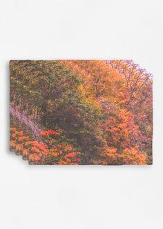 de mantel Klinkhammer Vickie otoño Conjunto por de brillante PvqwwB1x