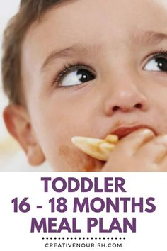 An easy toddler 16 - 18 month sample meal plan. #mealplan #toddlermenu #toddlerfood #toddlerfoodideas #healthytoddler Toddler Dinner Recipes, Toddler Menu, Toddler Lunches, Toddler Oatmeal Recipe, Meal Plan For Toddlers, Hungry Children, Group Meals, Daily Meals, Fish Recipes