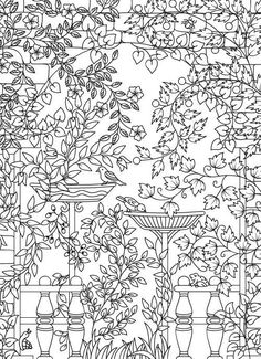 Amazon.com: Hidden Garden: An Adult Coloring Book with Secret Forest Animals, Enchanted Flower Designs, and Fantasy Nature Patterns (9781541002159): Jade Summer: Books