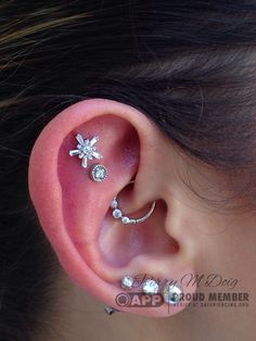 Double helix and daith piercings featuring all white gold jewels by Body Vision Los Angeles. Piercings done by me at Rose Gold's in San Francisco, California.