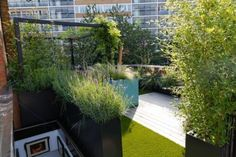 Rooftop gardens for small spaces Landscape Architecture, Landscape Design, Garden Design, Balcony Plants, Modern Patio, Terrace Garden, Rooftop Terrace, London, Designer
