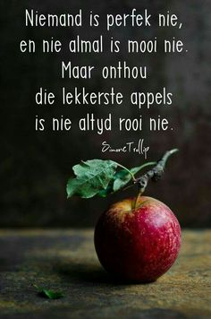 Die lekkerste appels is nie altyd rooi nie. Words Quotes, Me Quotes, Qoutes, Bible Quotes, Sayings, Afrikaanse Quotes, Fancy Words, Inspirational Quotes Pictures, Word Pictures