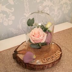 New products for brides and grooms planning a rustic wedding  https://www.facebook.com/SomethingBorrowedEventHire