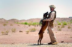 Come give me some puppy love! (U.S. Marine Corps photo by Cpl. Aaron Diamant)