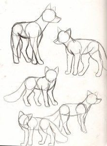 40 Free & Easy Animal Sketch drawing information and .- 40 Free & Easy Animal Sketch Zeichnen von Informationen und Ideen 40 Free & Easy Animal Sketch Drawing information and ideas - Fox Drawing, Furry Drawing, Drawing Base, Figure Drawing, Drawing Animals, Wolf Drawing Easy, Drawing Birds Easy, Dog Drawing Simple, Kitty Drawing