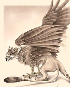 Gennia news: Mitologia: Grifos