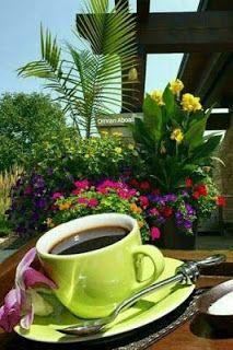 K Cup Coffee Maker, Coffee Cafe, Coffee Drinks, Coffee Shop, Coffee Logo, Good Morning Coffee, Coffee Break, I Love Coffee, Best Coffee