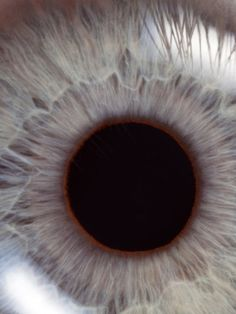 """11 Things Your Eyes Are Trying To Tell You About Your Health-FYI optometrists can look at your retina, lens, eyelids, etc too! not just ophthalmologists!  optometrists - """"eye dr's"""" yep!"""