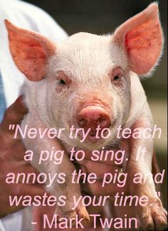 Accountability: Are you trying to teach a pig to sing?   Read step-by-step instructions on how to take accountability at: http://www.castlecoaching.co.za/?p=931  If you like it our accountability piglet, please repin!