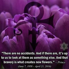 """Synchronicity (Quote) """"There are no accidents. And if there are, it's up to us to look at them as something else. And that bravery is what creates new flowers. Guys Be Like, I Love Him, Prince Images, Prince Quotes, Rain Quotes, Lyric Tattoos, Roger Nelson, Prince Rogers Nelson, Meaning Of Life"""