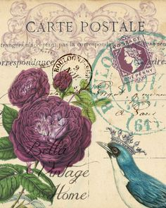 Roses Carte Postale Print Pillow Note Cards Original artwork created from vintage bookplates etchings papers Printed in the USA on handcraf Botanical Purple Roses Carte. Vintage Labels, Vintage Ephemera, Vintage Cards, Vintage Postcards, Vintage Images, Vintage Ideas, Decoupage Paper, Purple Roses, Mail Art