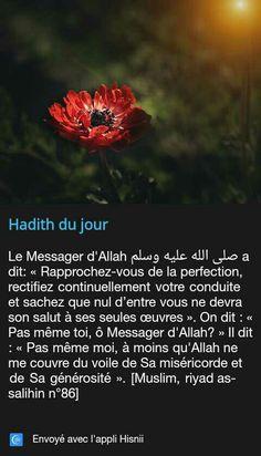 1499 Meilleures Du Images Et Tableau God IslamAllahAllah BreCodx