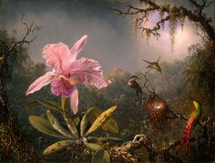 Cattleya Orchid and Three Hummingbirds - Martin Johnson Heade