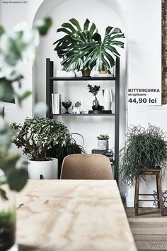 What's better than a trip to Ikea? A (metaphorical) trip to Ikeas around the globe. We perused the country-specific pages of international Ikea locales for a fresh perspective on how to use the classic pieces we all know and love. Luxury Homes Interior, Home Interior Design, Interior And Exterior, Ikea Ps Table, Buy Indoor Plants, Open Plan Apartment, Famous Interior Designers, Ikea Family, Ikea Furniture