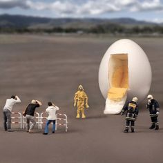 William Kass: egg man from outer space