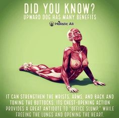 Fitness & Exercise tips for people with Autoimmune Diseases Daily Stretches, Back Pain Exercises, Stretching Exercises, Health And Fitness Articles, Health Fitness, Poster Sport, Upward Dog, Downward Dog, Sport Nutrition