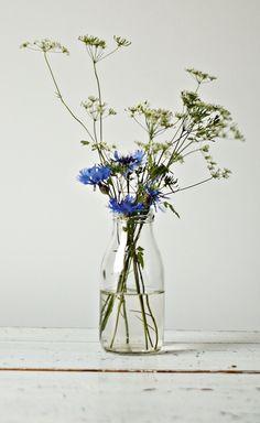 """I added """"it's me!: {FLOWER FRIDAY} Kornblumenblau, Gierschw"""" to an #inlinkz linkup!http://einwenighiervonunddavon.blogspot.de/2015/07/flower-friday-kornblumen-giersch-farn.html"""