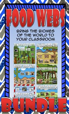 Food Chain & Food Web Card Sort Bundle (Desert, Temperate Forest, Temperate Grassland, Savanna, Rain forest, and Arctic).