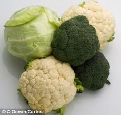 Broccoli, cauliflower and cabbage help protect body against radiation