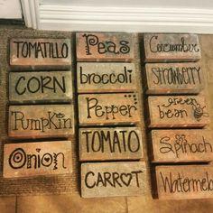 10 Kind Simple Ideas: Cute Vegetable Garden Seeds vegetable garden containers pe… - All For Garden Fall Vegetables, Container Gardening Vegetables, Planting Vegetables, Vegetable Gardening, Succulent Containers, Container Flowers, Container Plants, Growing Vegetables, Veggies