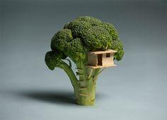 """I couldn't build a tree house for my son so i built him a broccoli house instead"""