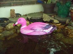 painted duck decoy ~ nail polish & auto touch-up paint