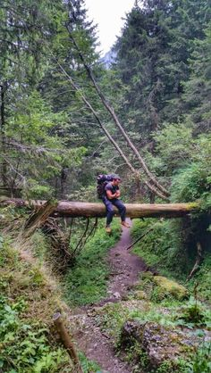 Wanderlust in Bucegi Natural Park, Romania.