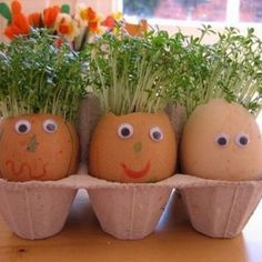 Whether you're looking for egg decorating ideas, bunny rabbit crafts or fun ways to decorate your home these Easter crafts and activities have some great ideas for you Egg Decoration Spring Crafts, Holiday Crafts, Spring Toddler Crafts, Rabbit Crafts, Easter Weekend, Easter Brunch, Egg Decorating, Egg Shells, Craft Activities
