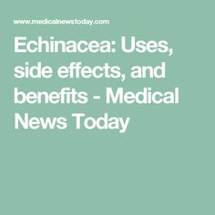 Echinacea: Uses, side effects, and benefits - Medical News Today